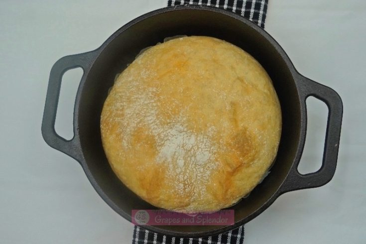 Crusty No knead Dutch Oven Bread Recipe